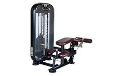SH-N9017 舒华卧式大腿曲伸训练器